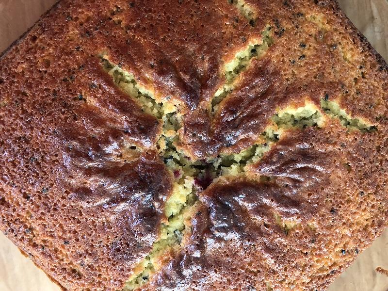 Kwark-maanzaadcake met zwarte bessen